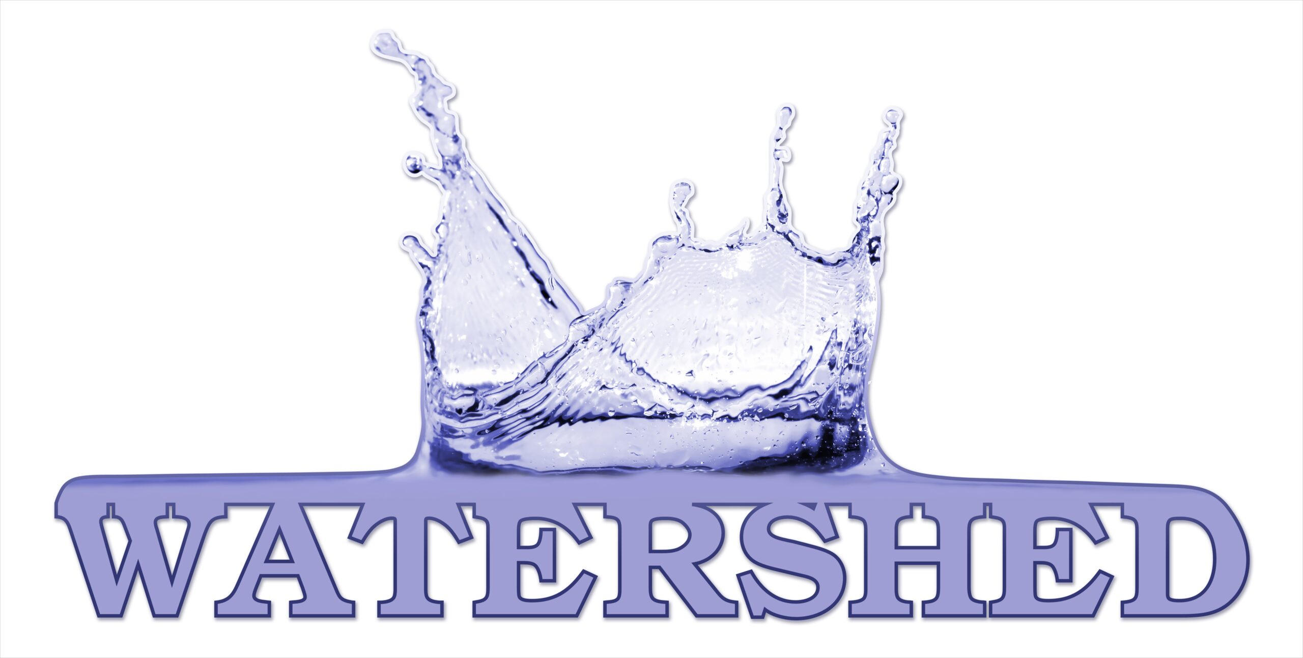 Watershed Security logo