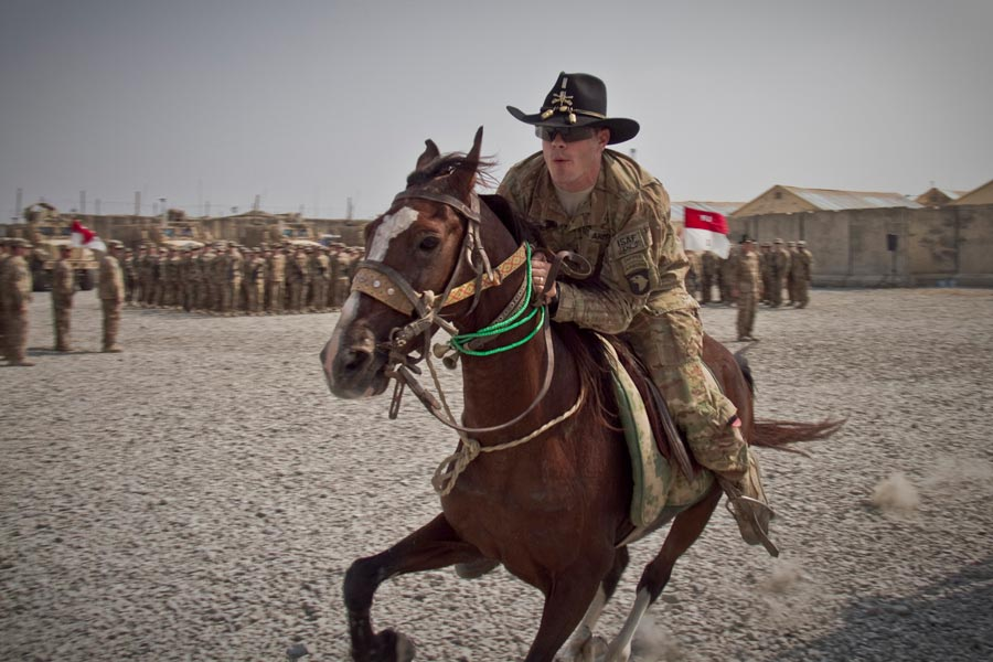Army Horse