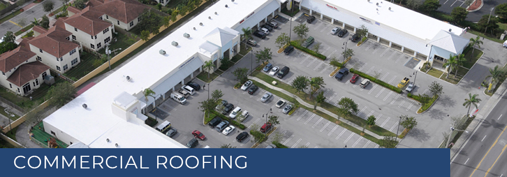 View of a Commercial Roof