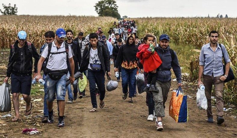 Migrants Bump The Assault Stats Up