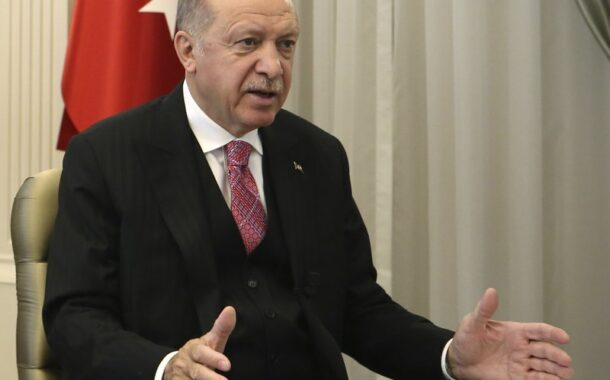 Turkey: 11 detained over tweets dealing with leader's family