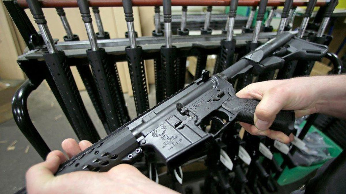New Bill Requires Gun Owners to Join Public Registry and Report Where They Keep Their Guns