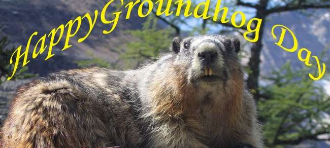 Groundhog Day 2017 Images Canada