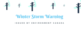 http://www.mycatimes.com/winter-storm-warning-issued-for-owen-sound-blue-mountains-northern-grey-county/