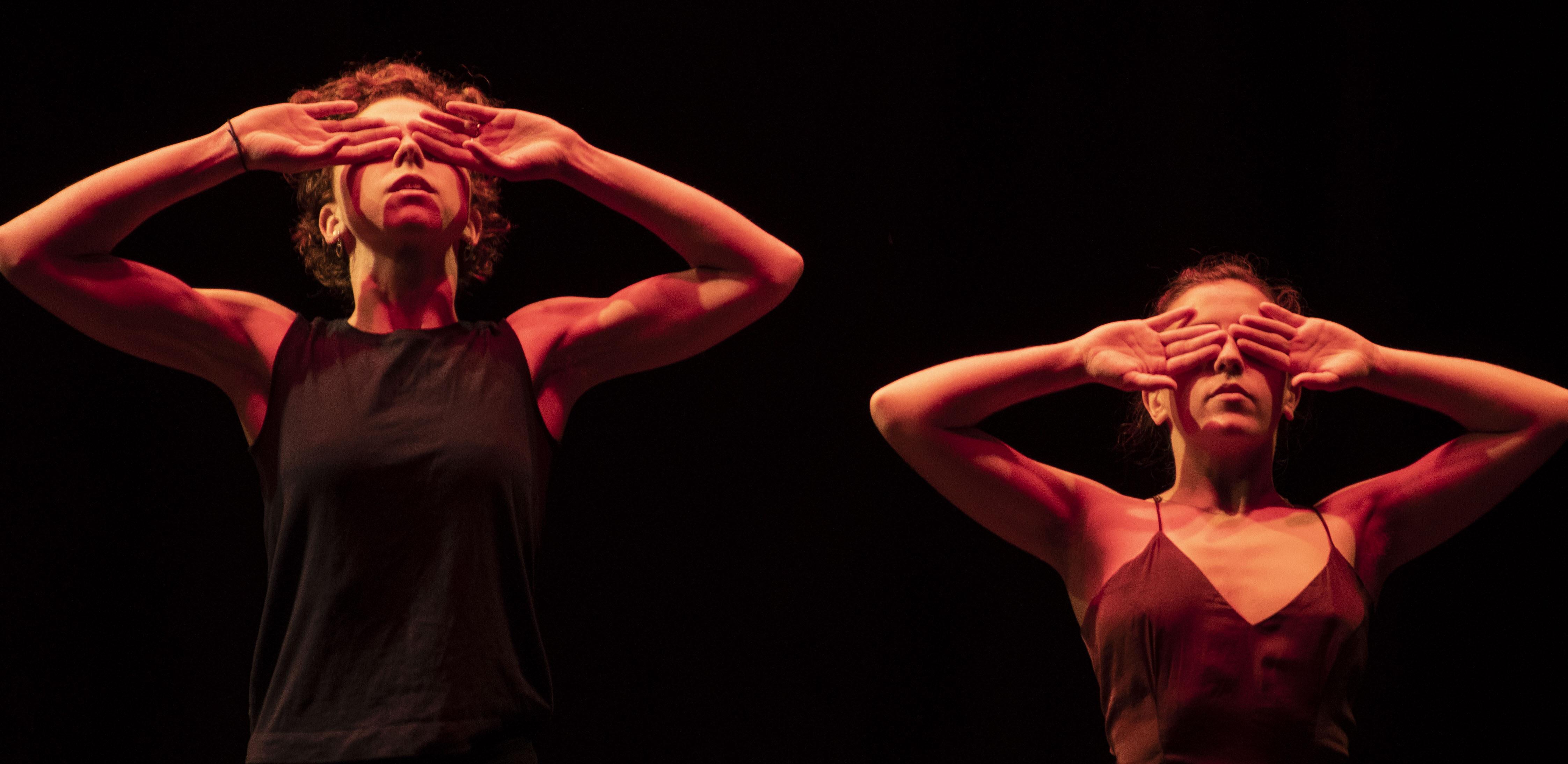 Immersion dancers