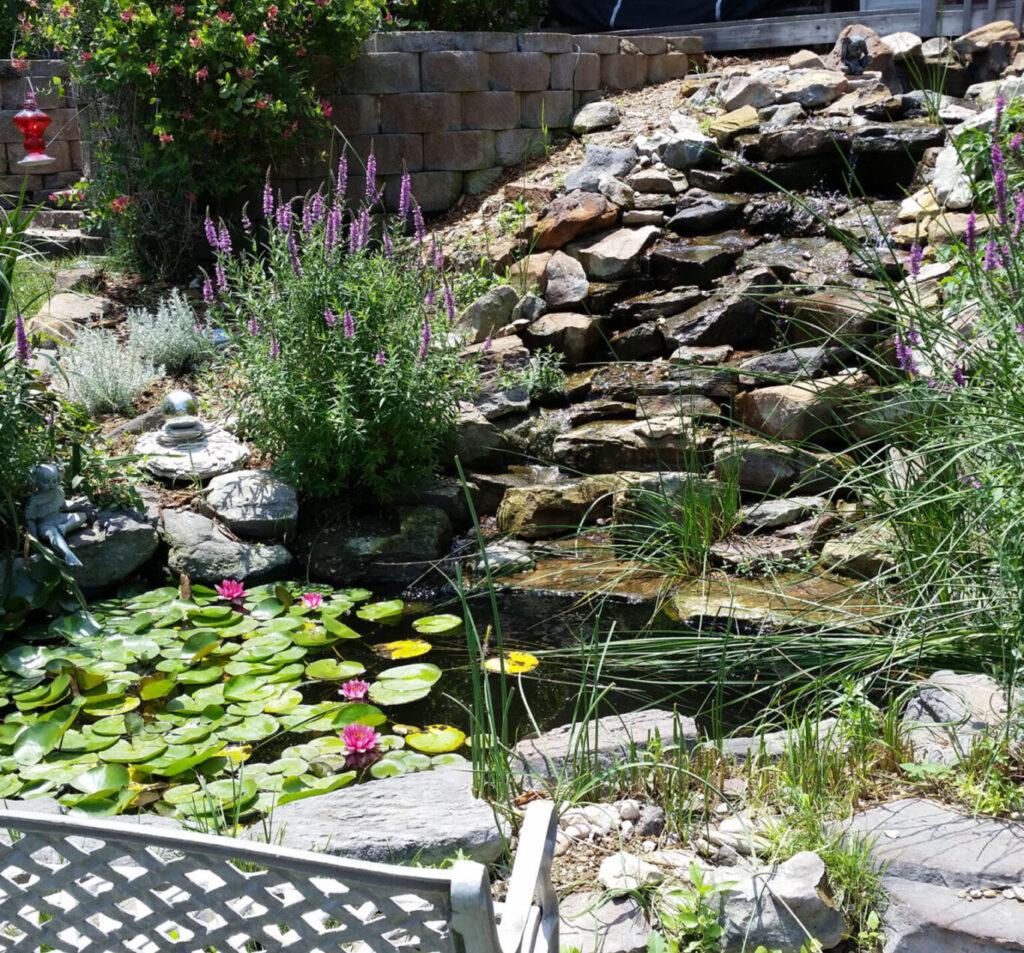 We build beautiful ponds!