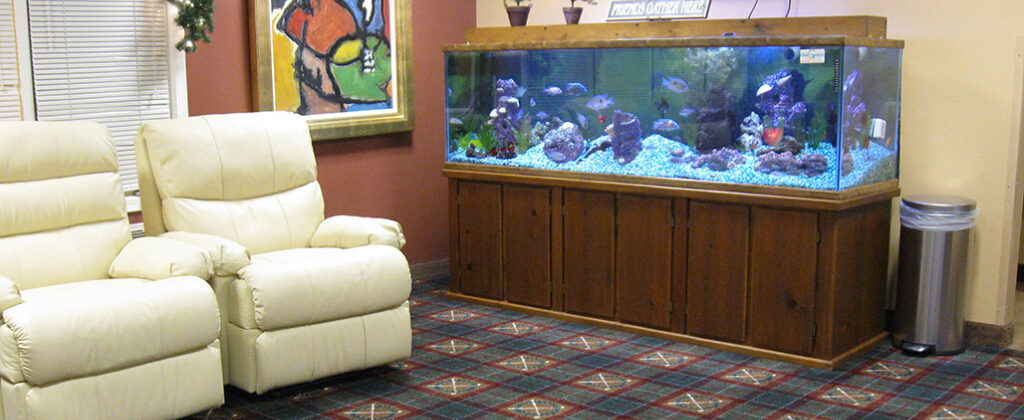 240 gal aquarium and leather reclining chairs