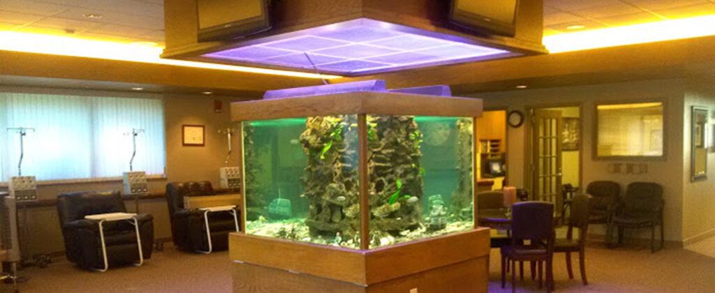 inpatient-treatment-room-400-gal-cube-aquarium
