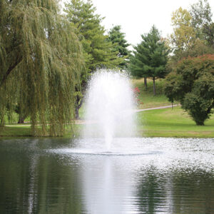 """Kasco's decorative pond fountain """"Birch"""" produces an aeratious geyser of water. However, """"Birch"""" uses a low-volume nozzle with a narrow footprint."""