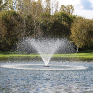 """Decorative pond fountains like the Kasco 3400 """"Willow"""" produce a contemporary trumpet shape using a low-volume nozzle."""