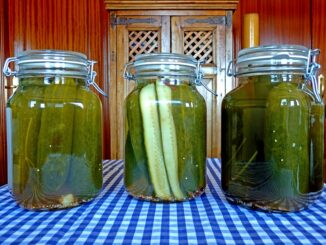 pickles in canning jars