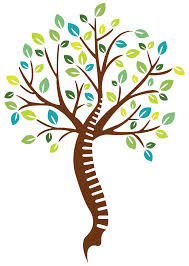 Chiropractic tree of life