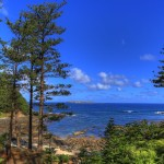 Bumboras on Norfolk Island