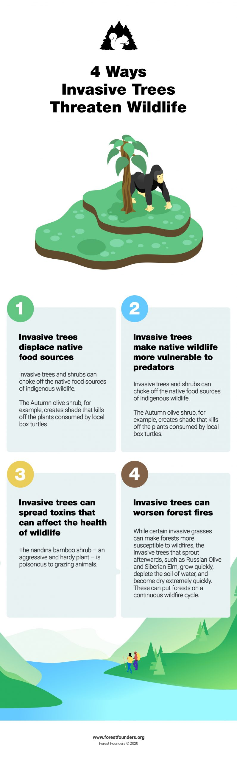 Image for Invasive Tree Species: How Invasive Trees and Plant Species Threaten Native Forests