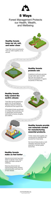 Image for FOREST MANAGEMENT: THE IMPORTANCE OF PROTECTING OUR FORESTS