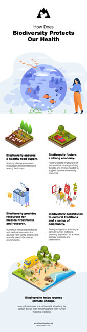 Image for BIODIVERSITY AND HUMANS