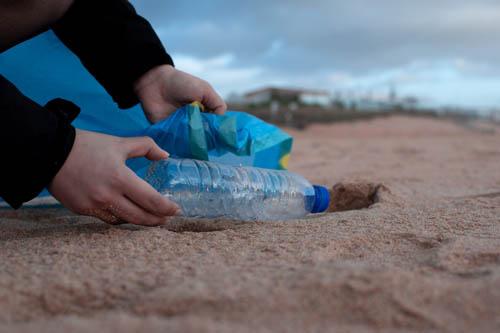Image for Environmentally Conscious Brands