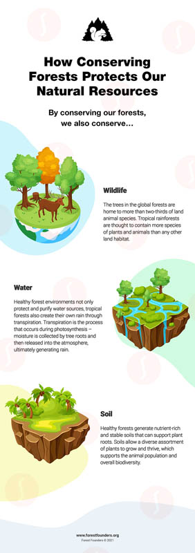 Image for HOW TO CONSERVE NATURAL RESOURCES