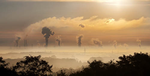 Image for Air & Water Pollution