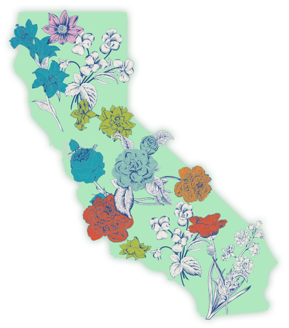 California Cannabis Delivery