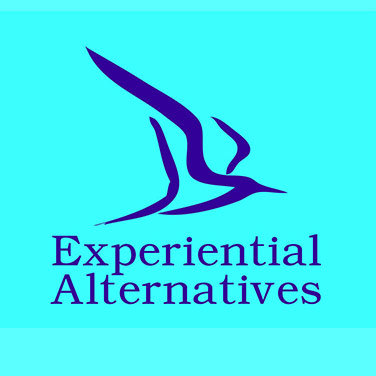 Experiential Alternatives