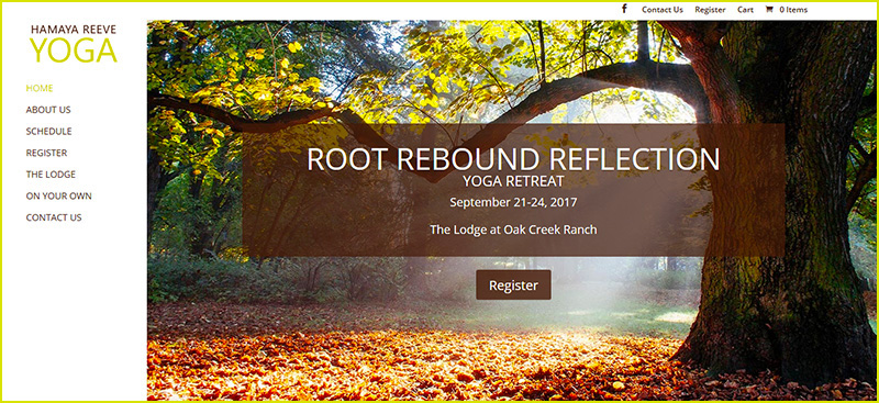 Root Rebound Reflection
