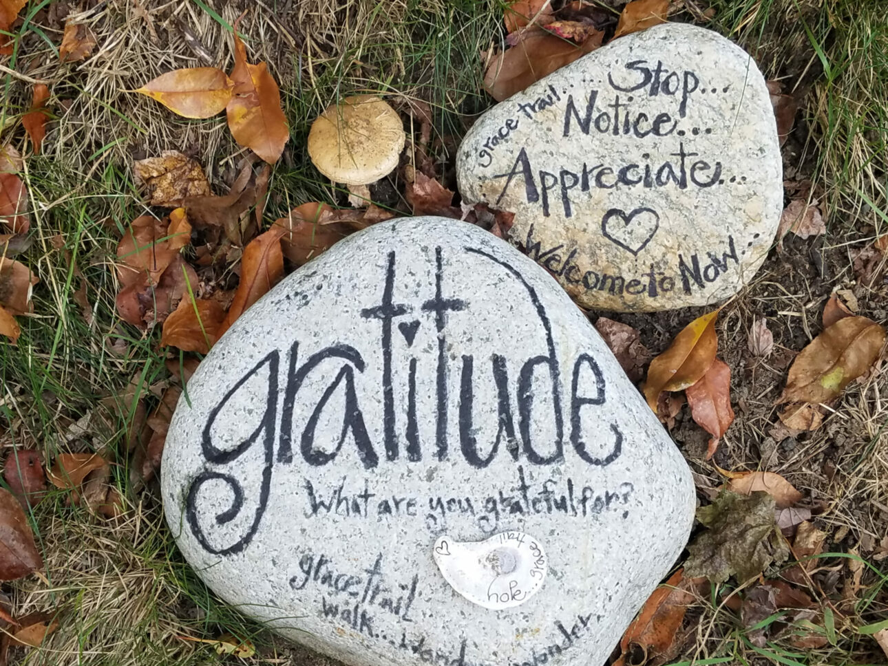 Use gratitude to stay focused during and beyond addiction recovery