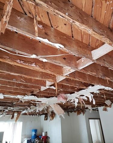 Interior Roof Repair