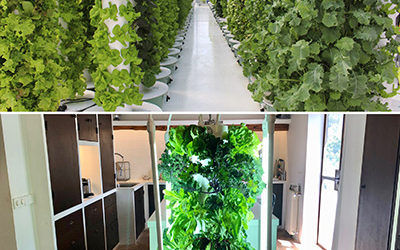 What is the difference between a Tower Garden® and a Tower Farm?