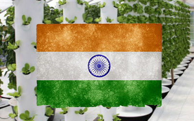 Tower Farms in India (and southeast Asia)