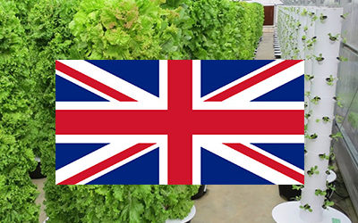 Tower Garden & Tower Farm in the UK
