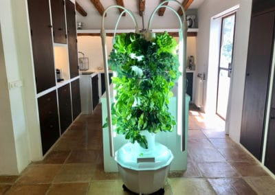 aeroponic-tower-garden-EU