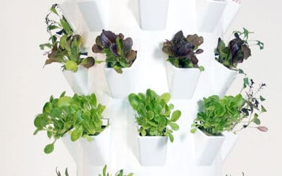 The aeroponic Microgreens Tower by Tower Garden®