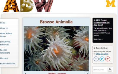 Portal Diversidad Animal sirve a millones