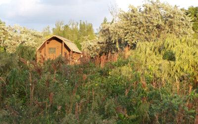 Cabañas rústicas en el Oleta River