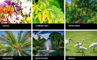 Jardín Botánico de Miami Beach: el verde oasis de la ciudad