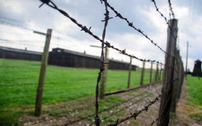 Memoria del holocausto: América Latina como refugio