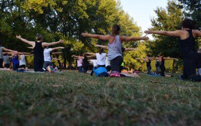 Clases de Hatha Yoga en Colee Hammock Park