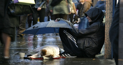 photo of man and dog on the street