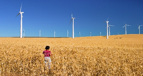 Photo of boy in field with wind turbines