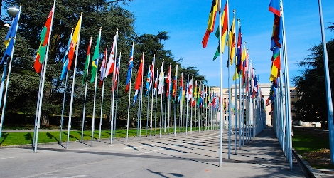 photo of United Nations flags lining walkway