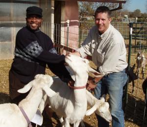 GoatPassOnGodwinAkpan