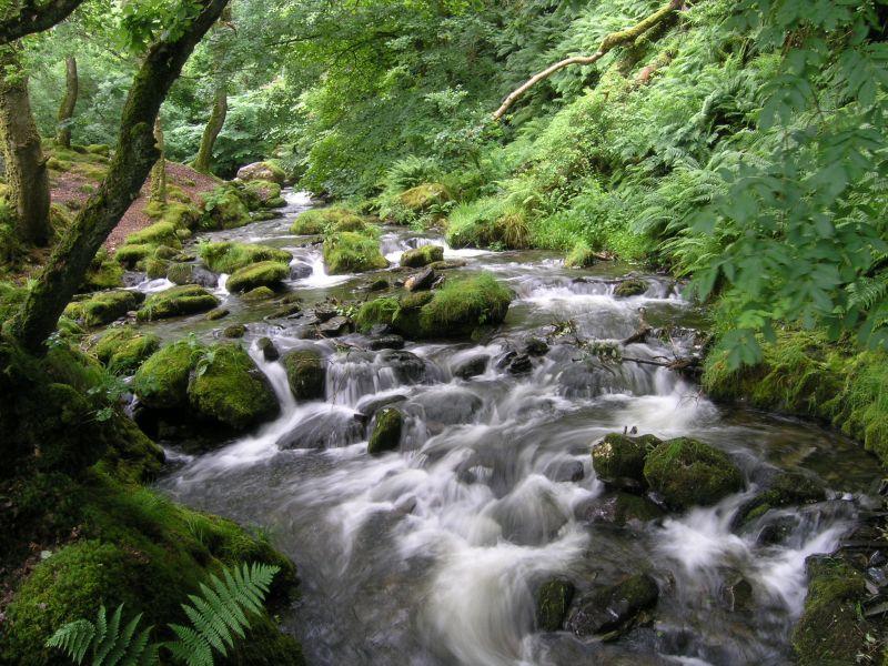 flowing_water