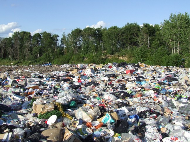 Landfill - Photo by Michelle Arseneault