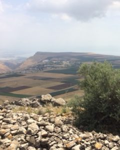 The Battle of Hattin was fought within sight of the Sea of Galilee.