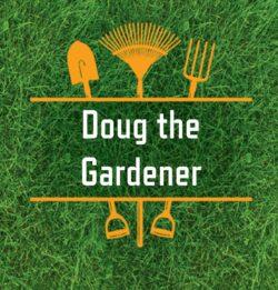 Doug the Wanaka Gardener