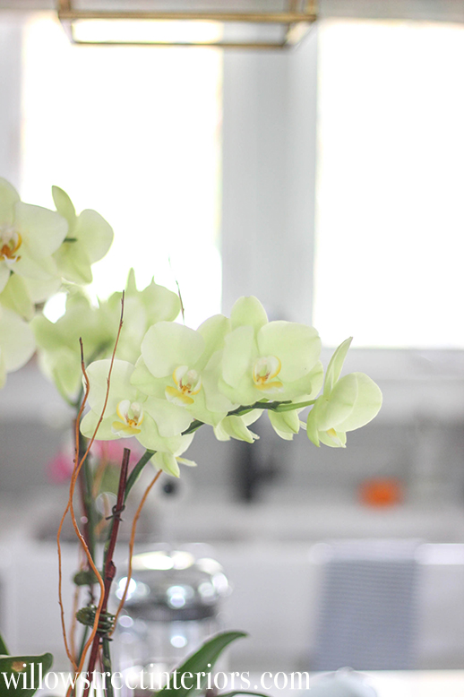 make an orchid planter