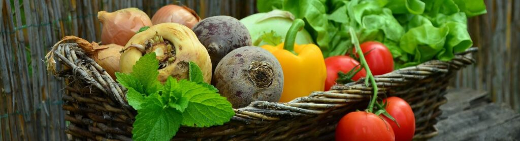 A basket of vibrant fruits and vegetables