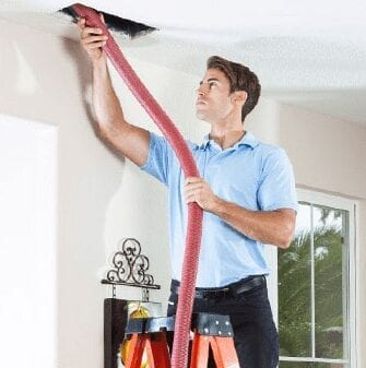 How should people clean up and eliminate mold?