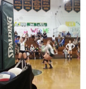 volleyball leehan2